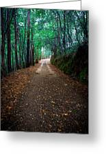 Autumn Walks Greeting Card