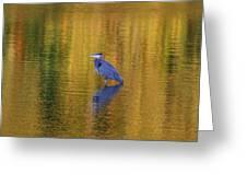 Autumn Watcher Greeting Card