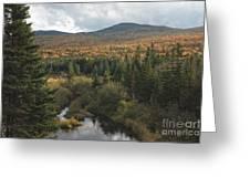 Autumn - White Mountains New Hampshire Greeting Card