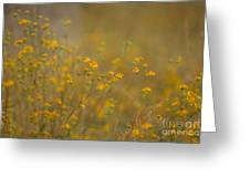 Autumn Wildflowers  Greeting Card