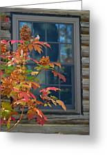 Autumn Window Greeting Card