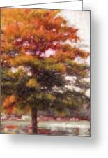 Autumn Xviii Greeting Card