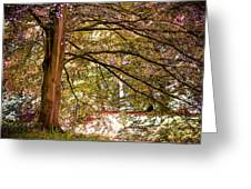 Autumnal Colors In The Summer Time. De Haar Castle Park Greeting Card