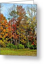 Autumnal Foliage Greeting Card