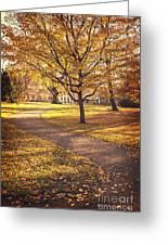 Autumnal Park Greeting Card