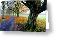 Autumnal Path Greeting Card