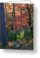 Autumnal Rock Greeting Card