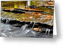 Autumnal Serenity Greeting Card