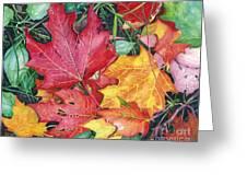 Autumn's Carpet Greeting Card