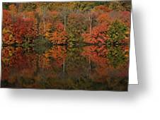 Autumns Design Greeting Card by Karol Livote