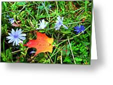 Autumns First Leaf Greeting Card