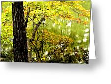 Autumn's First Reflections II Greeting Card
