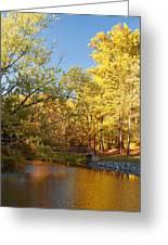 Autumn's Golden Pond Greeting Card by Kim Hojnacki