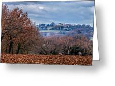 Autumns Leaves Winters Clouds Greeting Card