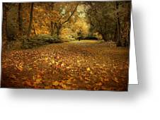 Autumn's Passage Greeting Card