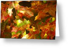 Autumn's Red Oak Leaves Greeting Card
