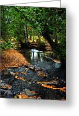 Autumns River Greeting Card