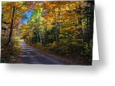 Autumns Road Greeting Card