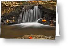 Autumns Stream Greeting Card by Susan Candelario