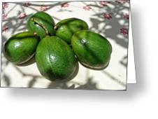 Avacados Greeting Card