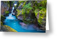 Avalanche Creek Gorge Greeting Card