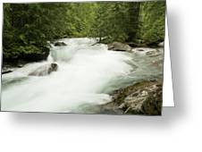 Avalanche Creek In Spring Run Off Greeting Card