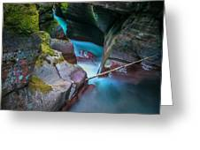 Avalanche Gorge Glacier National Park Painted   Greeting Card