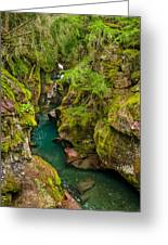 Avalanche Gorge In September Greeting Card