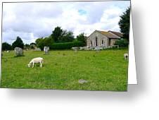 Avebury Stones And Sheep Greeting Card