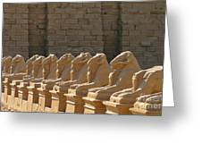 Avenue Of Sphinxes Greeting Card