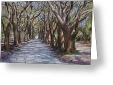 Avenue Of The Oaks Greeting Card by Henry David Potwin