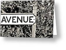 Avenue Sign Greeting Card