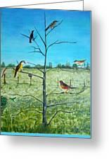 Aves En Comarca Del Sol Greeting Card