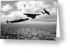 Avro Birds - Mono  Greeting Card
