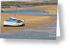 Awaiting The Tide Greeting Card