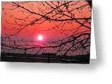 Awaken The Dawn Greeting Card