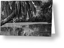 Awesome Pond 1 Greeting Card by Denise Mazzocco