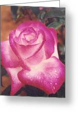 Awesome Rose Pristine Greeting Card by Robert Bray