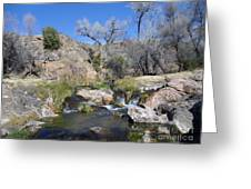 Az Life 14 Greeting Card