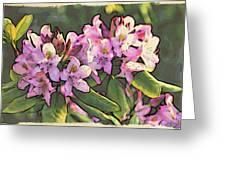 Azalea Art Greeting Card