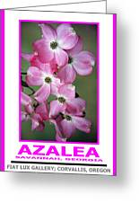 Azalea Savannah Georgia Greeting Card