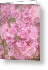 Azalea Textured Greeting Card