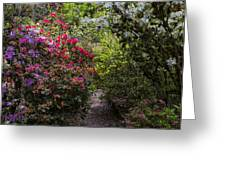 Azalea Trail Greeting Card