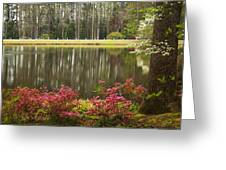 Azaleas And Reflection Pond Greeting Card