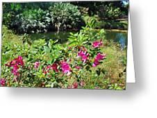 Azaleas By The Pond Greeting Card