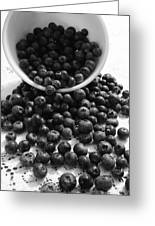 B And W Blueberries Greeting Card