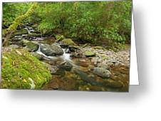 Kerry River Ireland Greeting Card by Pro Shutterblade