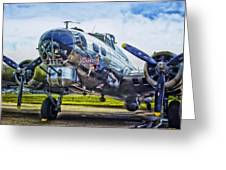 B17 Bomber Yankee Lady Greeting Card