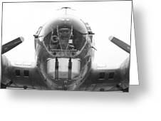 B17 Nose Guns Greeting Card