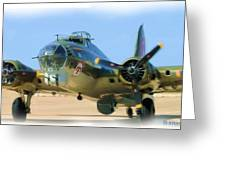 B17g 002 Greeting Card